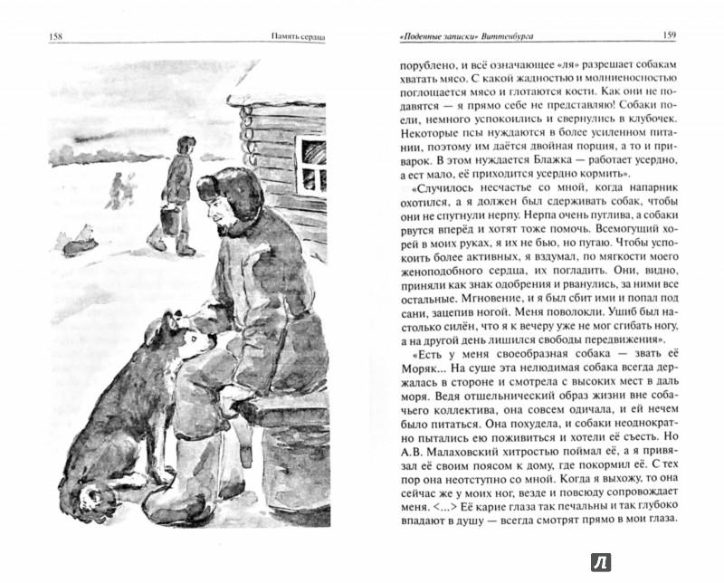 Иллюстрация 1 из 29 для Память сердца - Ольга Рожнева | Лабиринт - книги. Источник: Лабиринт