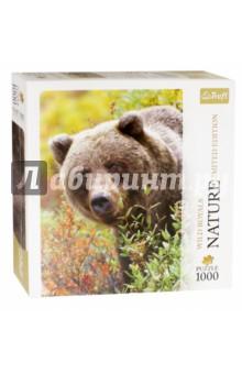 Купить Puzzle-1000 Медведь Гризли. Аляска, США (10518), Trefl, Пазлы (1000 элементов)