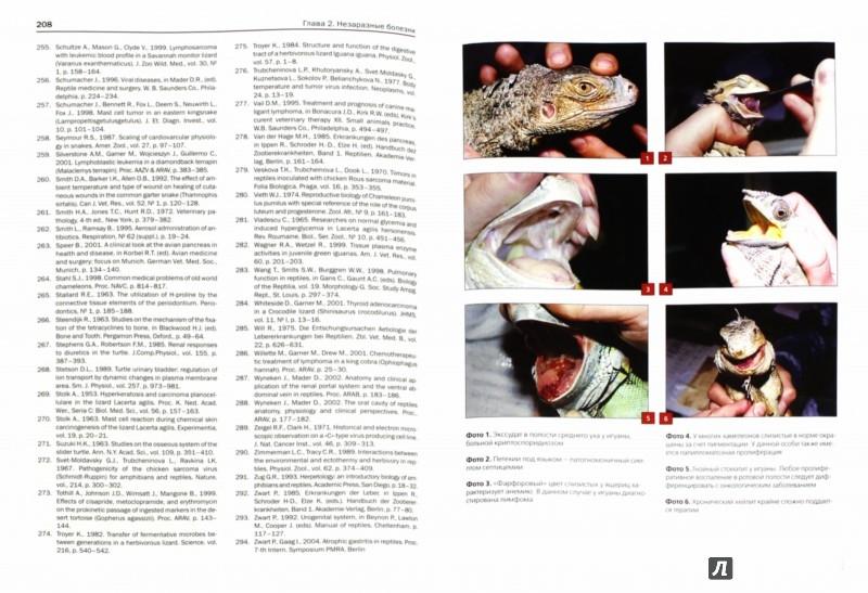 Иллюстрация 1 из 21 для Ветеринарная герпетология - Дмитрий Васильев | Лабиринт - книги. Источник: Лабиринт