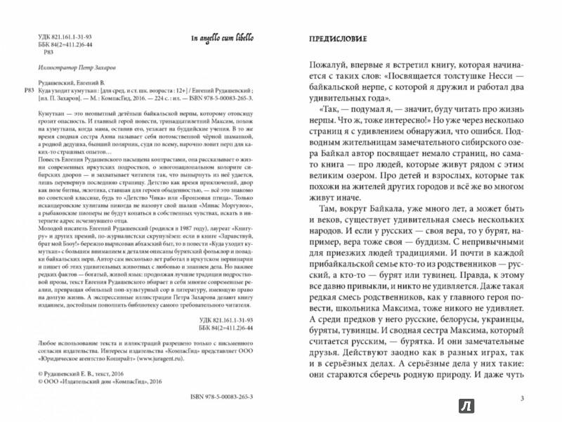 Иллюстрация 1 из 18 для Куда уходит кумуткан - Евгений Рудашевский | Лабиринт - книги. Источник: Лабиринт