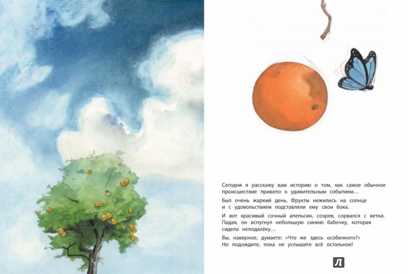 Иллюстрация 1 из 56 для Во всём виноват апельсин - Квентин Гребан   Лабиринт - книги. Источник: Лабиринт