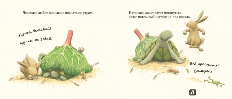 Иллюстрация 1 из 31 для Как Заяц и Черепаха книжку читали - Лейн Марлоу | Лабиринт - книги. Источник: Лабиринт