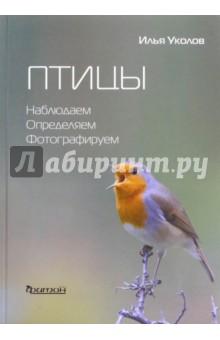 Птицы. Наблюдаем, определяем, фотографируем электронные устройства отпугивающие птиц в иркутске