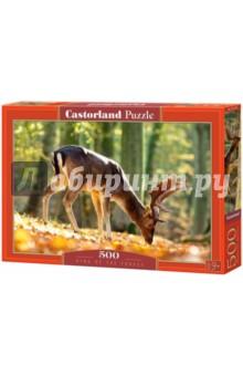 Puzzle-500 Король леса (B-52325) puzzle 500 вид санторини b 52905