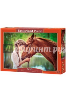 Puzzle-500 Девушка и лошадь (B-52516) puzzle 500 яркие совы alpz500 7701