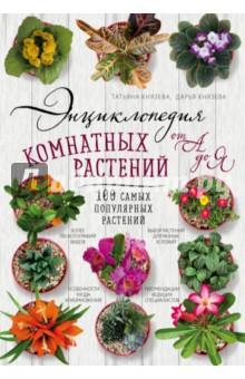 Энциклопедия комнатных растений от А до Я. 100 самых популярных растений математика для малышей я считаю до 100