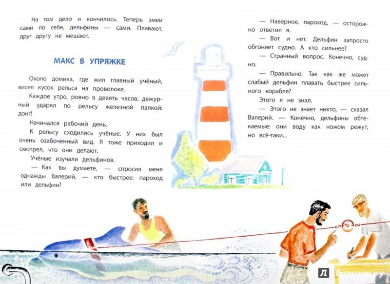 Иллюстрация 1 из 32 для Дельфиний остров: рассказы - Святослав Сахарнов | Лабиринт - книги. Источник: Лабиринт