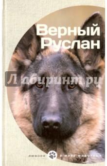 Верный Руслан купить щенка немецкая овчарки белого окраса цена видео картинки