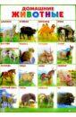 Плакат Домашние животные (555х774)