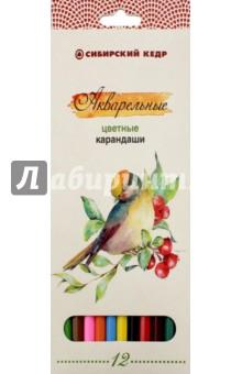 """Карандаши цветные, акварельные """"Птицы Сибири"""", 12 цветов (СК083/12)"""