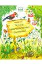 Жизнь замечательных растений, Голь Николай