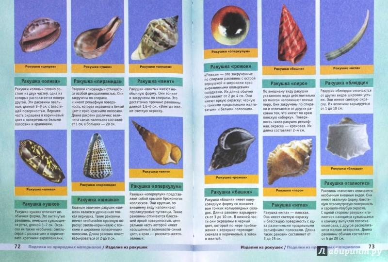 Иллюстрация 1 из 16 для Поделки из природных материалов - Светлана Хворостухина | Лабиринт - книги. Источник: Лабиринт