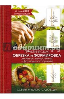 Практическая обрезка и формировка деревьев, декоративных и фруктовых кустарников соколов и и обрезка деревьев и кустарников плодовых и декоративных