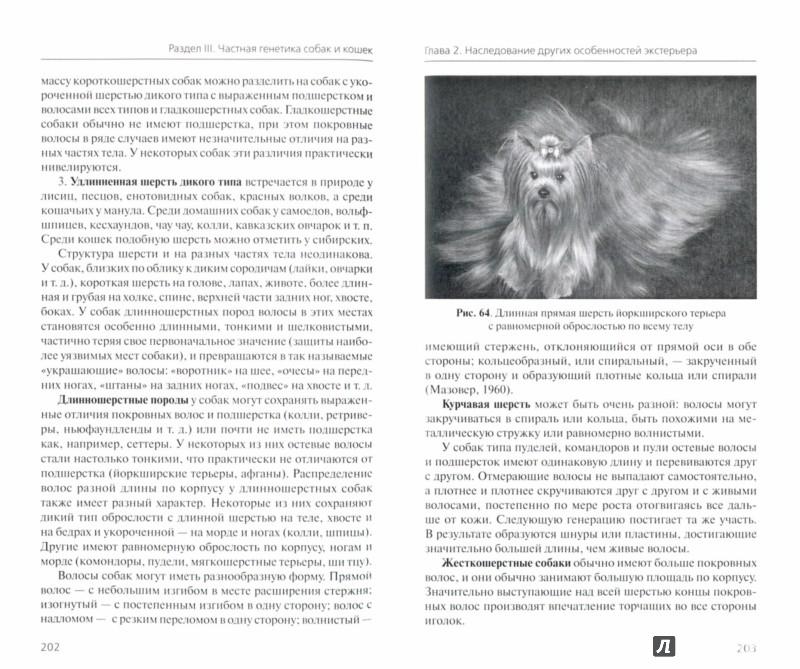 Иллюстрация 1 из 8 для Генетика и наследственные болезни собак и кошек - Сотская, Московкина | Лабиринт - книги. Источник: Лабиринт