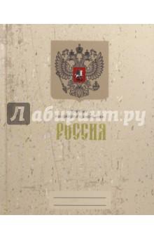 Дневник российского школьника Дизайн 2 (твердая обложка) (ДРЛФ174802) спейс дневник школьный российского школьника дц48т 11485