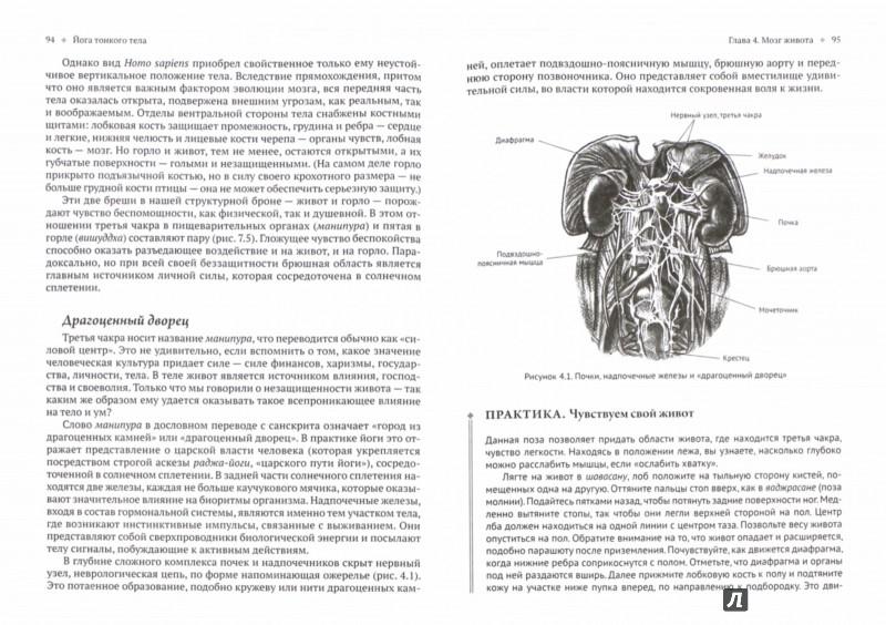 Иллюстрация 1 из 17 для Йога тонкого тела. Руководство по физической и энергетической анатомии йоги - Тиас Литтл | Лабиринт - книги. Источник: Лабиринт