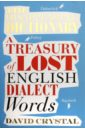 Crysral David The Disappearing Dictionary: A Treasury of Lost Words