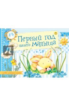 Книги Издательство АСТ Первый год нашего малыша