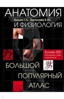 Анатомия и физиология. Большой популярный атлас анна спектор большой иллюстрированный атлас анатомии человека