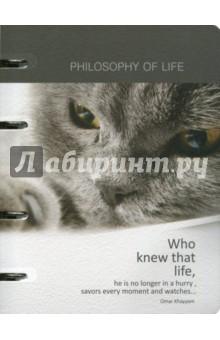 Тетрадь Cats&dogs (120 листов, кольцевой механизм, клетка, А5) (N656) тетрадь доминанта froggy а5 120 листов клетка с кольцевым механизмом