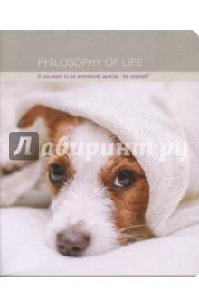 "Тетрадь Cats&dogs"" (48 листов, скрепка, клетка, А5) (N846) Доминанта"
