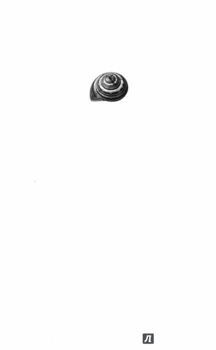 Иллюстрация 1 из 22 для Крылатый сфинкс, печальный цербер - Антон Леонтьев | Лабиринт - книги. Источник: Лабиринт