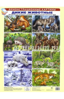 Демонстрационные картины: Дикие животные дикие животные