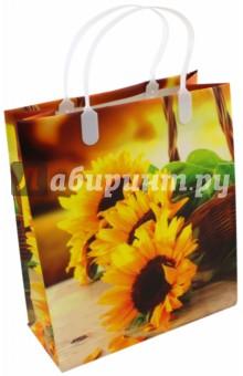 Пакет пластиковый (230х260х100 мм) (PBS 159) росмэн подарочный пакет петух 230 180 100 мм