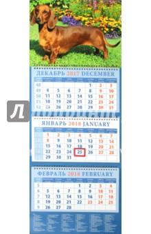 Календарь квартальный на 2018 год Год собаки. Такса среди цветов (14805)
