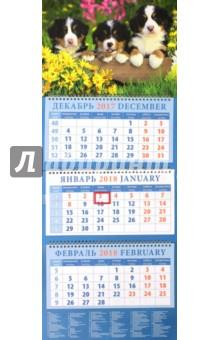 Календарь квартальный на 2018 год Год собаки. Щенки бернской горной пастушьей собаки (14823)