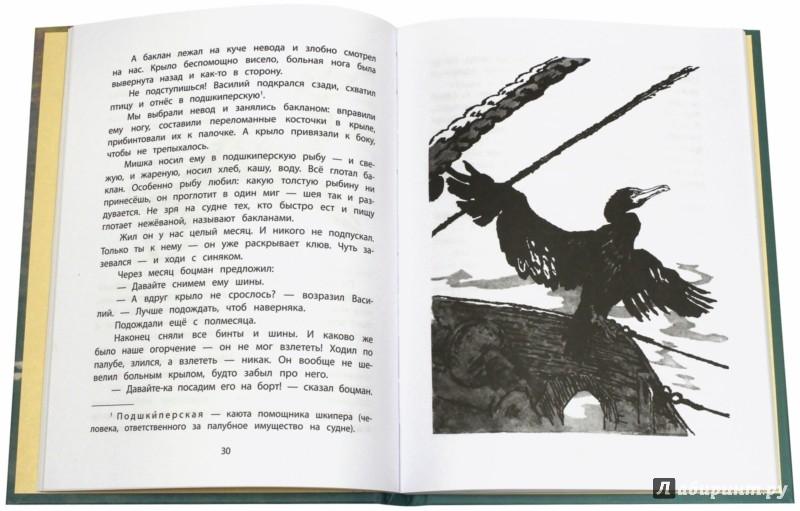 Иллюстрация 1 из 47 для Необыкновенный заплыв - Николай Рыжих | Лабиринт - книги. Источник: Лабиринт