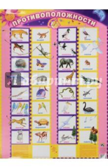 Детский плакат Противоположности обучающие плакаты маленький гений плакат буквы прописи