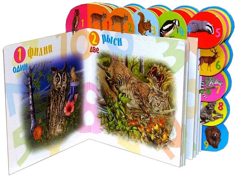 Иллюстрация 1 из 6 для Учимся считать. В лесу | Лабиринт - книги. Источник: Лабиринт