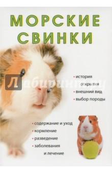 Морские свинки моя книга о животных