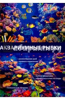 Аквариумные рыбки интернет магазин рыбки в аквариуме