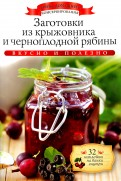 Заготовки из крыжовника и черноплодной рябины (+32 наклейки)