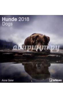 Календарь 2018 Собаки 30*30 (95673)