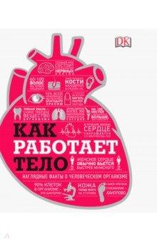 Купить Как работает тело, Манн, Иванов и Фербер, Популярная анатомия для детей