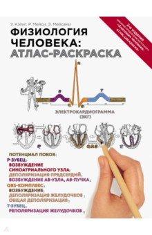 Физиология человека. Атлас-раскраска анатомия человека атлас