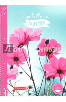 Тетрадь 80 листов, А4, гребень, Колледж Summertime, лин.