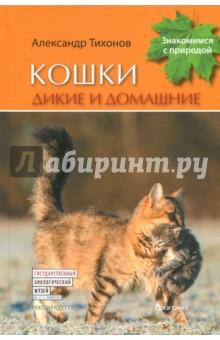 Кошки дикие и домашние фитон