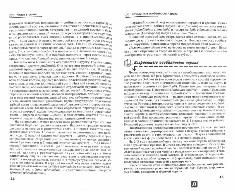 Иллюстрация 1 из 19 для Анатомия человека для студентов вузов и колледжей - Александр Швырев   Лабиринт - книги. Источник: Лабиринт