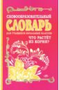 Словообразовательный словарь для учащихся начальных классов, Гуркова Ирина Васильевна