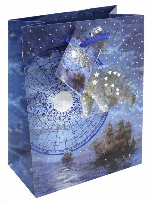 """Иллюстрация 1 из 9 для Пакет бумажный """"Большая медведица"""" (17,8х22,9х9,8 см) (43512)   Лабиринт - сувениры. Источник: Лабиринт"""
