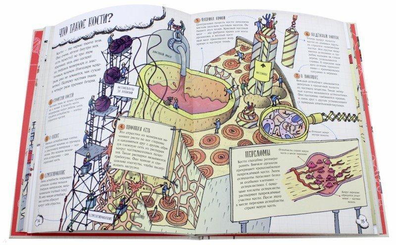 Иллюстрация 1 из 20 для Большое путешествие по телу человека - Джон Фарндон | Лабиринт - книги. Источник: Лабиринт