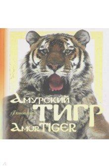 Амурский тигр. Фотоальбом куплю бенгальские метисы кошки фотографии