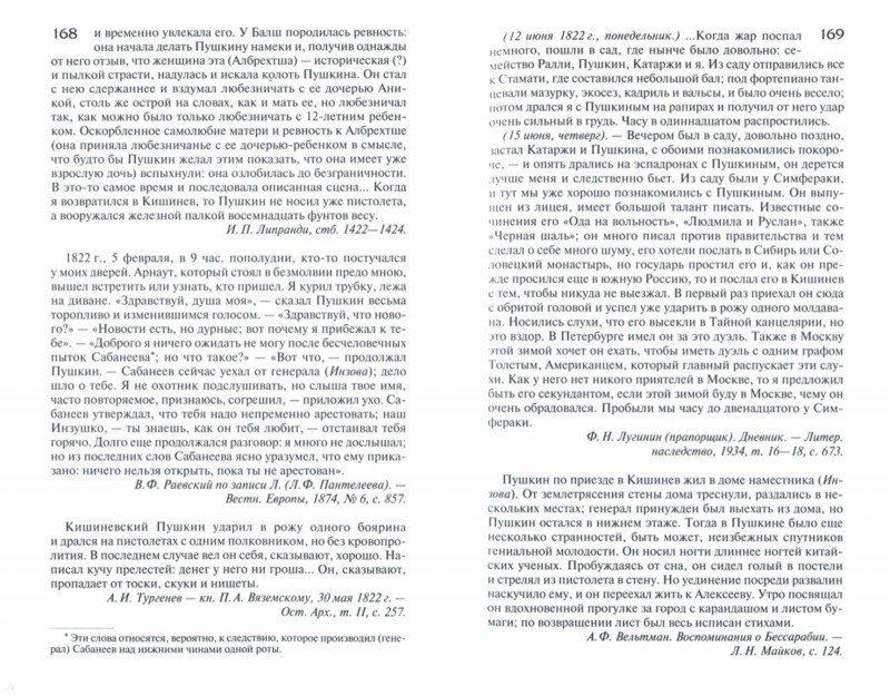 Иллюстрация 1 из 17 для Пушкин в жизни - Викентий Вересаев | Лабиринт - книги. Источник: Лабиринт