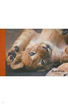 Альбом для рисования Львенок (40 листов, А4, склейка) (А401680)