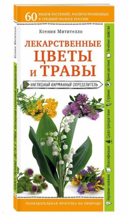 Иллюстрация 1 из 2 для Лекарственные цветы и травы. Наглядный карманный определитель - Ксения Митителло | Лабиринт - книги. Источник: Лабиринт