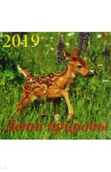 Календарь 2019 Дети природы (70923)